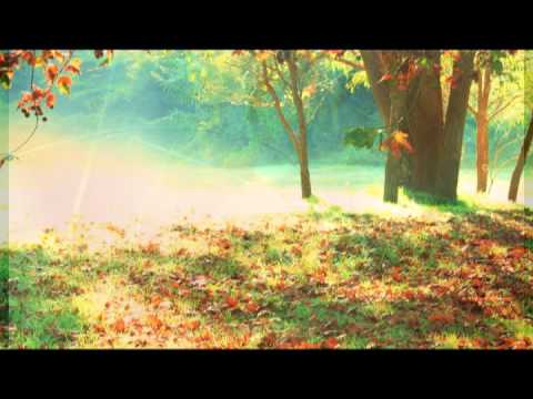 Sleep Music: Sleeping Music and Relaxing Music for sleeping,Relax,Lullabies to help you Sleep