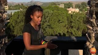 ኢትዮጵያን እንወቅ ጎንደር የምንትዋብ ቤተ-መንግስት Discover Ethiopia Season 2 Ep 8 /Ye Mentewab Betemengesete