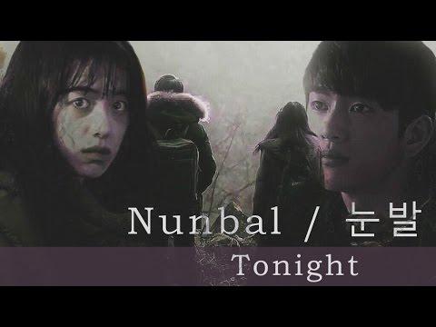✿ A Stray Goat | Nunbal | 눈발 | Tonight  [ FMV ] ✿