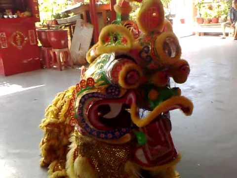 Lion Dancing Lion Dance Unicorn Dance