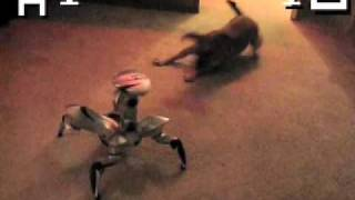 Thumb Perro contra Roboquad, la batalla épica