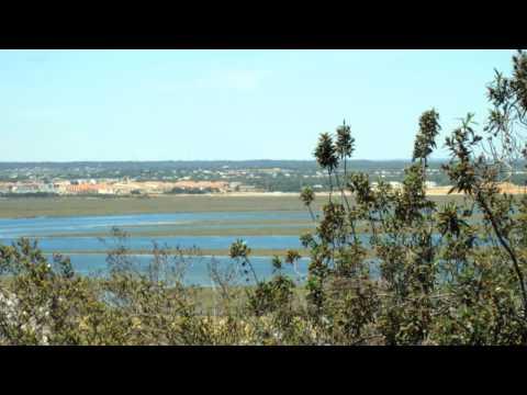 El Niño Miguel : Brisas de Huelva