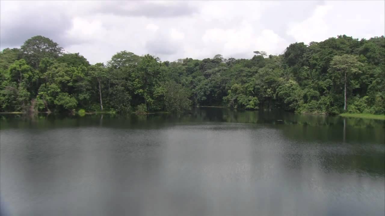 Es hermosa la naturaleza en gamboa the landscapes of for Naturaleza hermosa