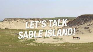 Let's Talk Sable Island!