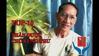 Ung thư-Top 10 thần dược chữa ung thư-Lá đu đủ