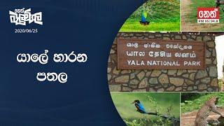 Neth Fm Balumgala  | 2020-06-25
