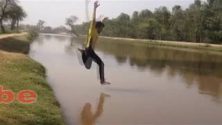 funny videos 2018. picnic funny video .fly bee teasing