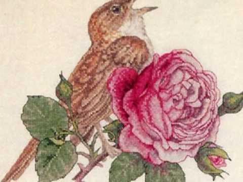Ефрем Амирамов Соловей и роза