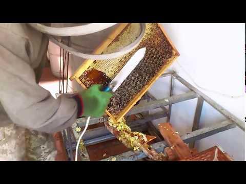 0 - Відкачування меду з вулика як робити з медогонкой і без неї