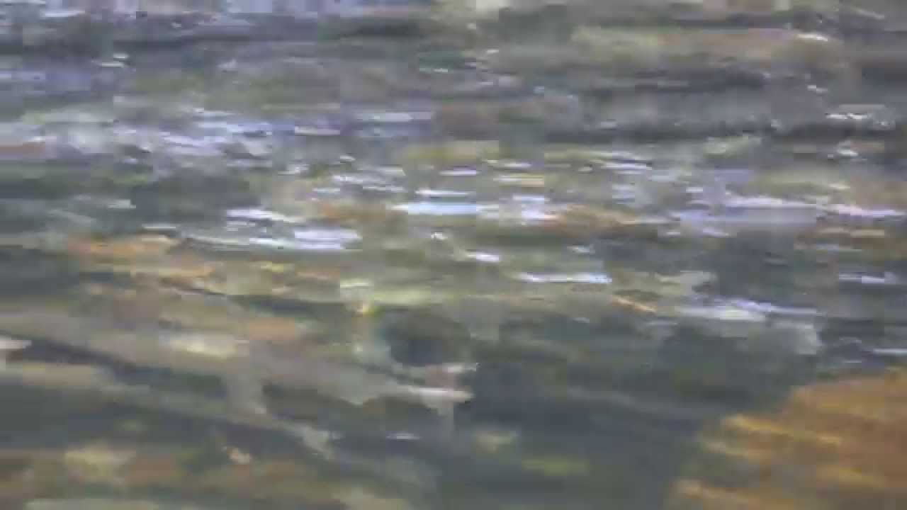 9 28 14 salmon youtube for Washougal river fishing