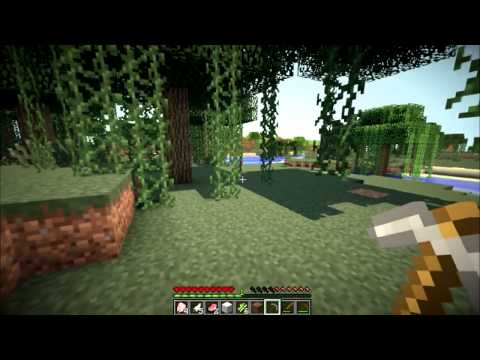 Minecraft: Hardcore High Score! Part 1 - Nooch vs Bajan!