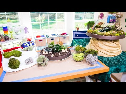 Home & Family - Creating an Emerald Isle Tabletop Garden