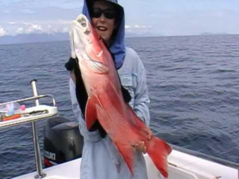 Fishing Mayhem monster Red Emperor