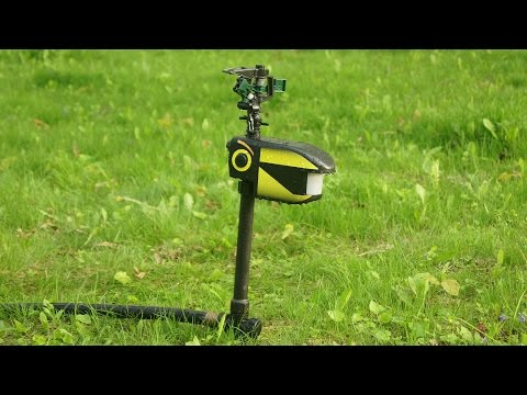 NEW! - Scarecrow Motion Activated Sprinkler Test & Review: BEST Animal Deterrent?