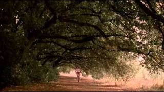 Io ballo da sola (Stealing Beauty) - Mozart Clarinet Concerto In A Major K 622
