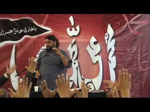 Shaukat Raza Shaukat - Paris france (27.04.2014) video