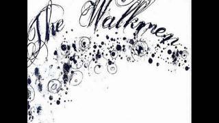 Walkmen-Fly Into the Mystery