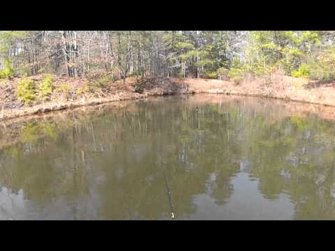 Crappie fishing on the Marshyhope in Maryland 3/21/2014