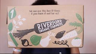 RIVERFORD ORGANIC SMALL VEGETABLE BOX REVIEW   LONDON AFRO VEGAN