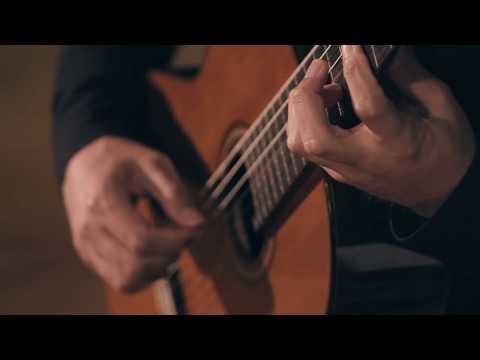 Leo Brouwer - Sonata Movement 1 Fandangos Y Boleros