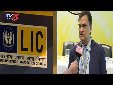 LIC 62nd Anniversary Celebrations at Hyderabad | TV5 News