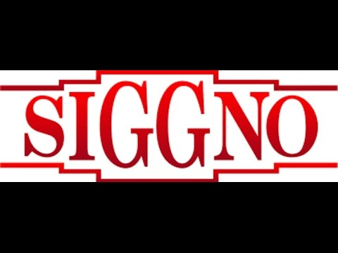 siggno-ya no me importa lyrics