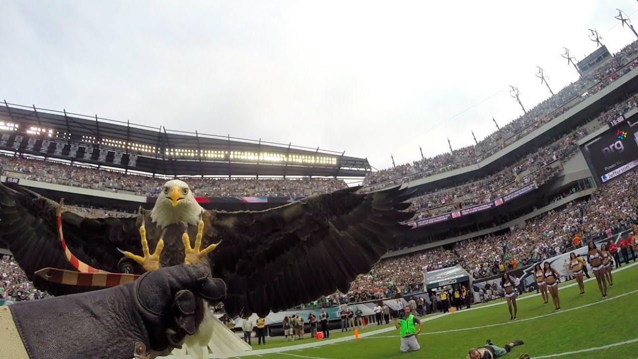Challenger Soars At Philadelphia Eagles Game Lincoln