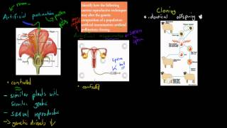 1. Current reproductive technologies (HSC biology)
