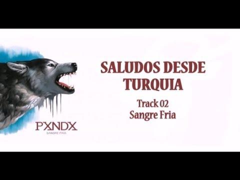 Saludos desde Turquía - Panda (Letra) HD