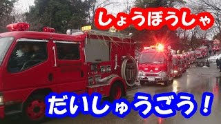 消防車大集合‼/Japanese fire engines 2
