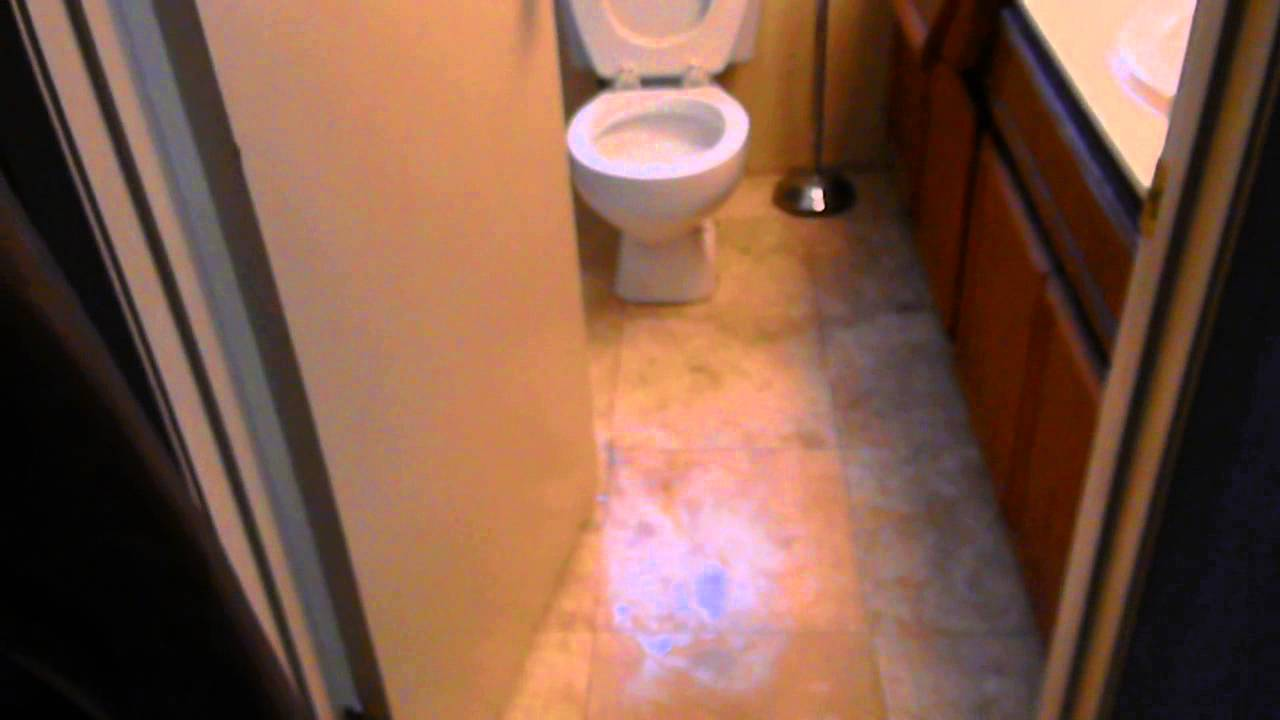 toilet overflow water cleanup in san diego part 1 619 699 0130 youtube. Black Bedroom Furniture Sets. Home Design Ideas