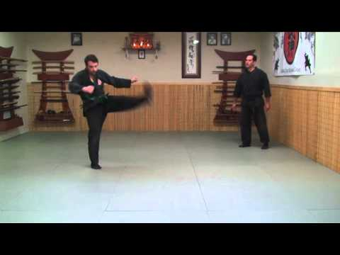 Ninjutsu Training Drill: Keri (Kicks) Ninja Training Video Blog Image 1