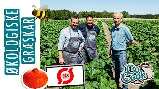 Film 18 | Sådan dyrker Jan økologiske græskar | GoCook by Coop
