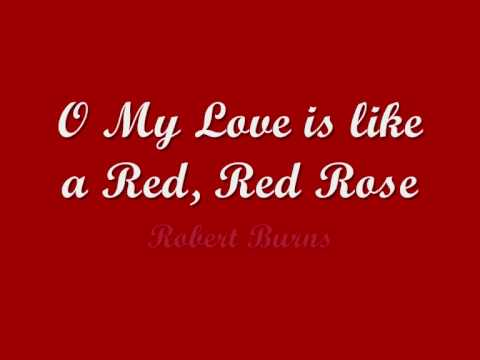 Robert Burns - My Love is Like a Red, Red Rose