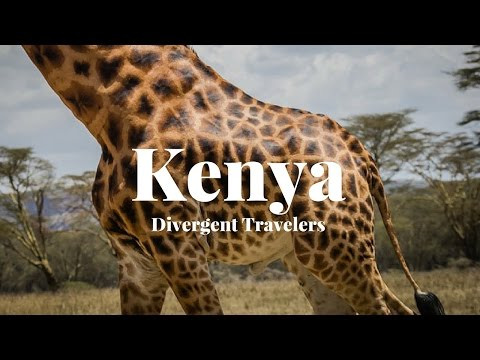 Travel Guide To Explore Kenya With The Divergent Travelers