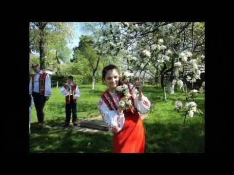 Русинська співанка_Цімборська