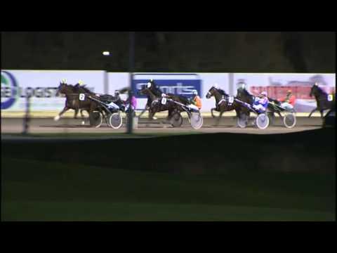 Vidéo de la course PMU PRIX REDDER TRANSPORT