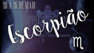 Escorpião - 20 a 26 Maio 2019 - Energias e Orientação