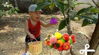 Trò chơi bé thu hoạch hoa quả siêu dễ thương | vườn trái cây của ba| nhạc thiếu nhi sôi động