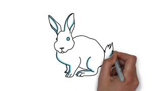 Rabbit Drawing For Kids | Kids Learning Videos | Kids Colors & Toysreview