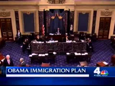 Rep. Pete King Discusses President Obama Executive Order on Immigration Reform