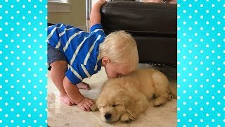 Cute Babies Sing and Comfort Their Sad Dogs 🐶👶 Dog and Baby Are Best Friends