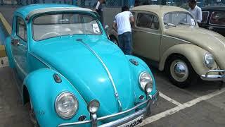 Volkswagen vintage cars show