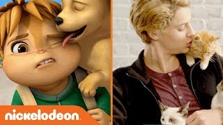 """Awesomely """"Awwdorable"""" Pet Moments w/ Jace Norman, SpongeBob, NRDD & More 🐶 🐱 