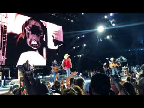 Everything's Gonna  Be Alright  by David Lee Murphy and Kenny Chesney
