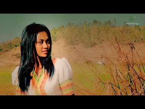 Selam Dimtsu - Dilyetey /ድሌተይ New Ethiopian Traditional Music Official Video