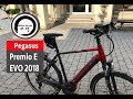 Pegasus premio evo 10 trekking 2018 test