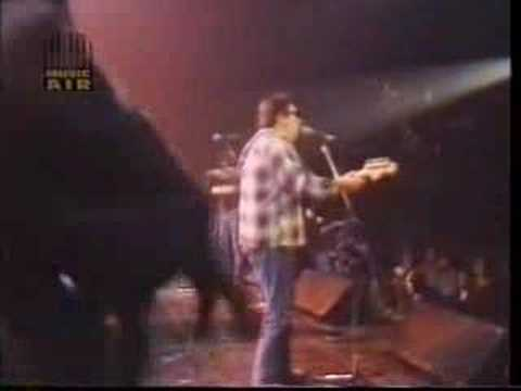 Los Lobos 'We're Gonna Rock' 1985