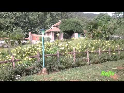 Vacation to Kerala, South India
