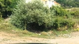 BMW E60 535D off road driving in KUKES ALBANIA